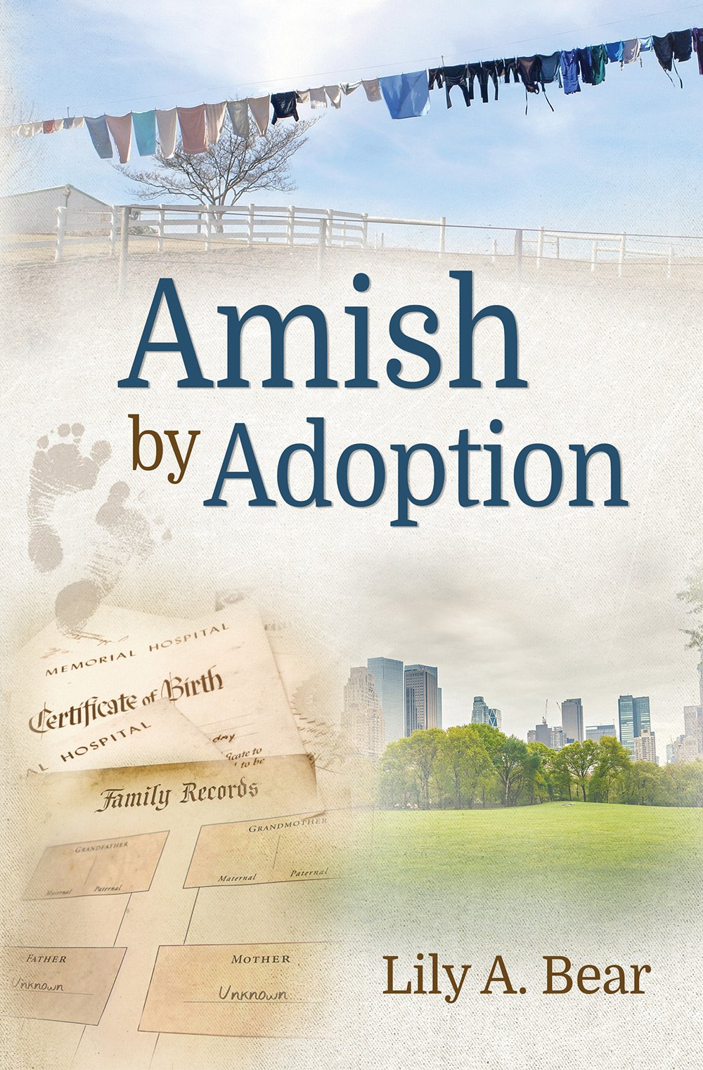 Amish by adoption lily a bear 9781941213834 amazon books aiddatafo Gallery