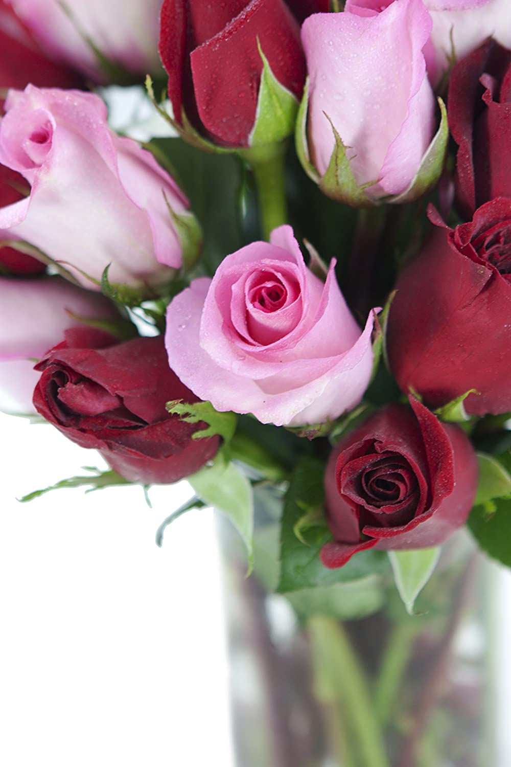 Amazon Bouquet Of Long Stemmed Red And Pink Roses Two Dozen