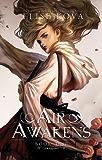 Air Awakens (Air Awakens Series Book 1) (English Edition)