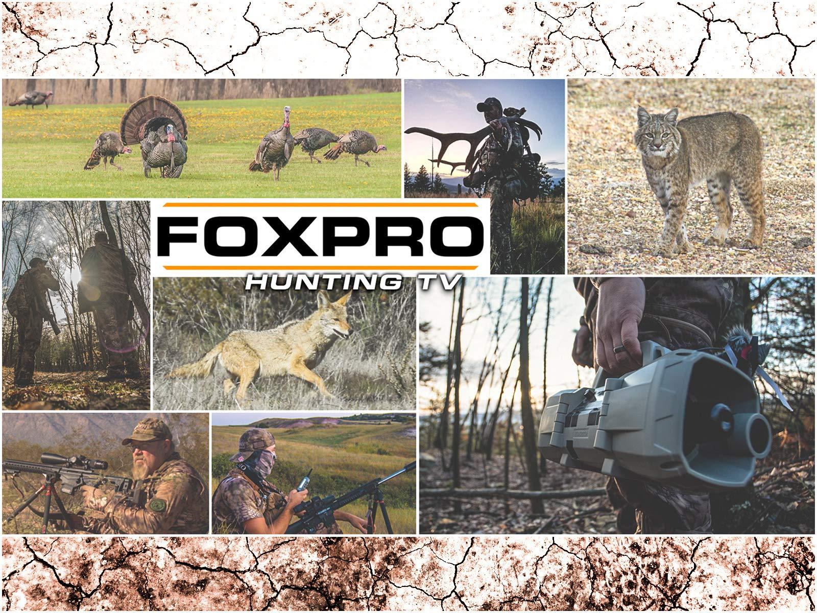 Foxpro Hunting