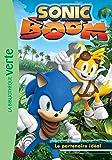 Sonic Boom 01 - Le partenaire idéal