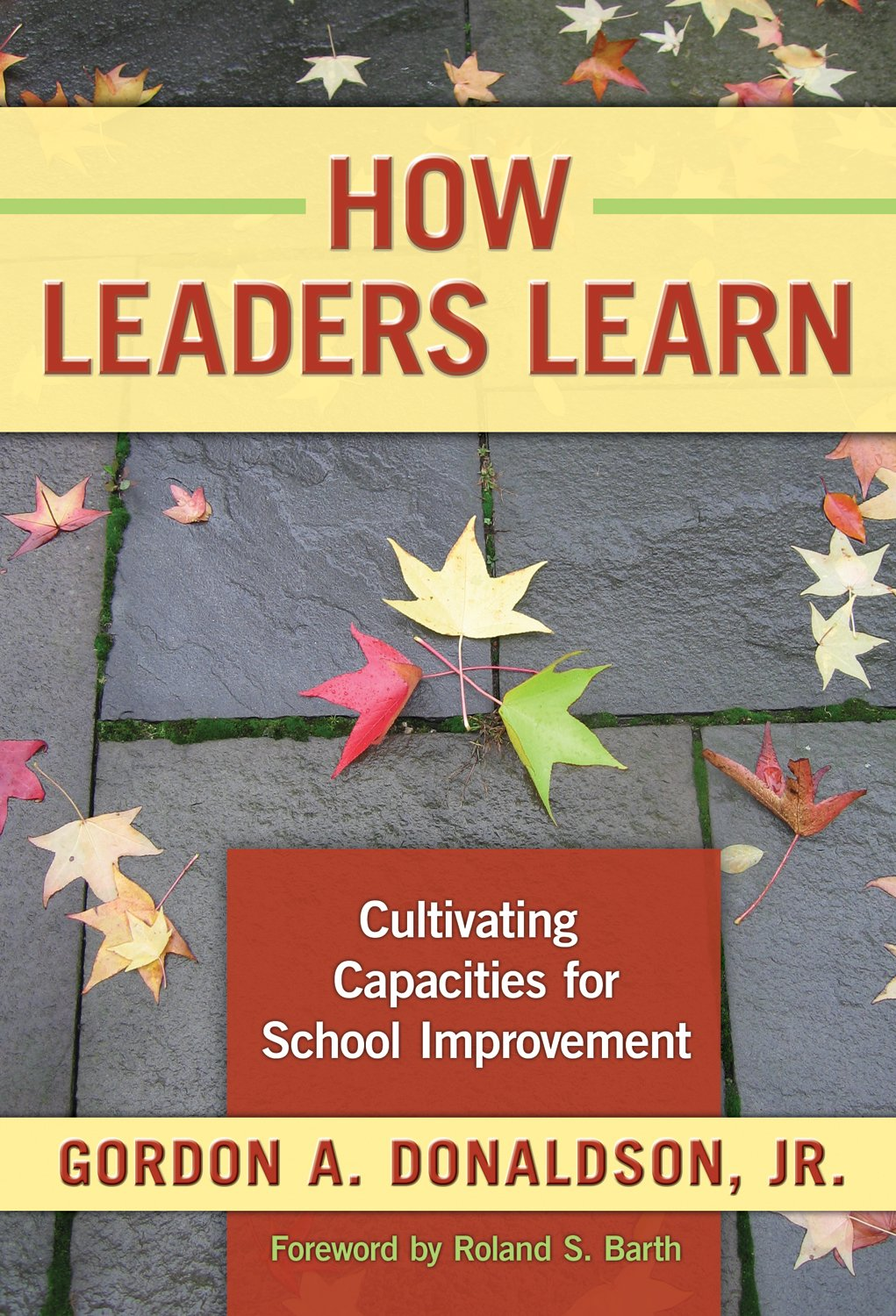 Read Online How Leaders Learn: Cultivating Capacities for School Improvement pdf