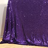 Poise3EHome 4FT x 7FT Sequin Photography Backdrop