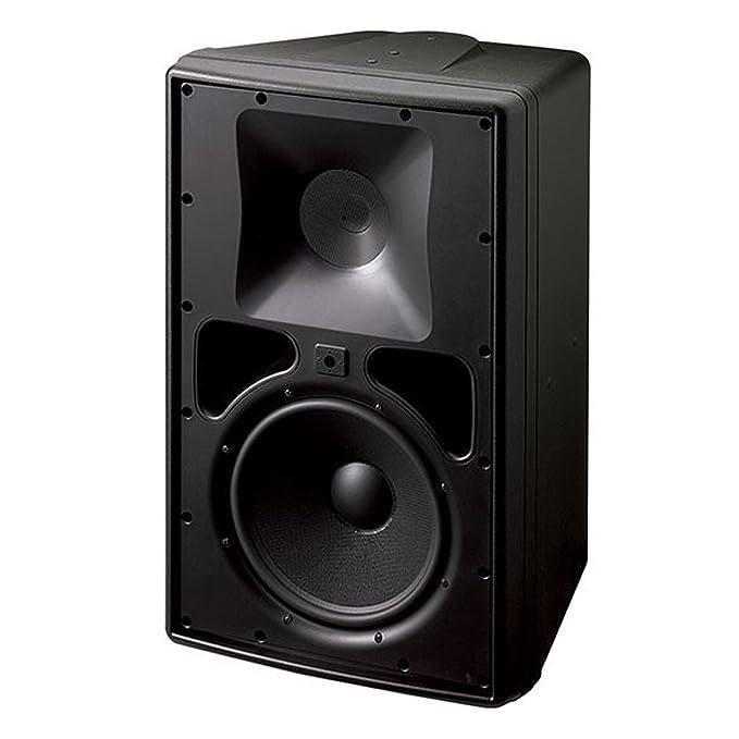 JBL Control 30 Serie de Control de 3 Vías Woofer de uso en exterior e interior Monitor 10 pulgadas 150 W altavoces (Single Speaker): Amazon.es: Instrumentos ...