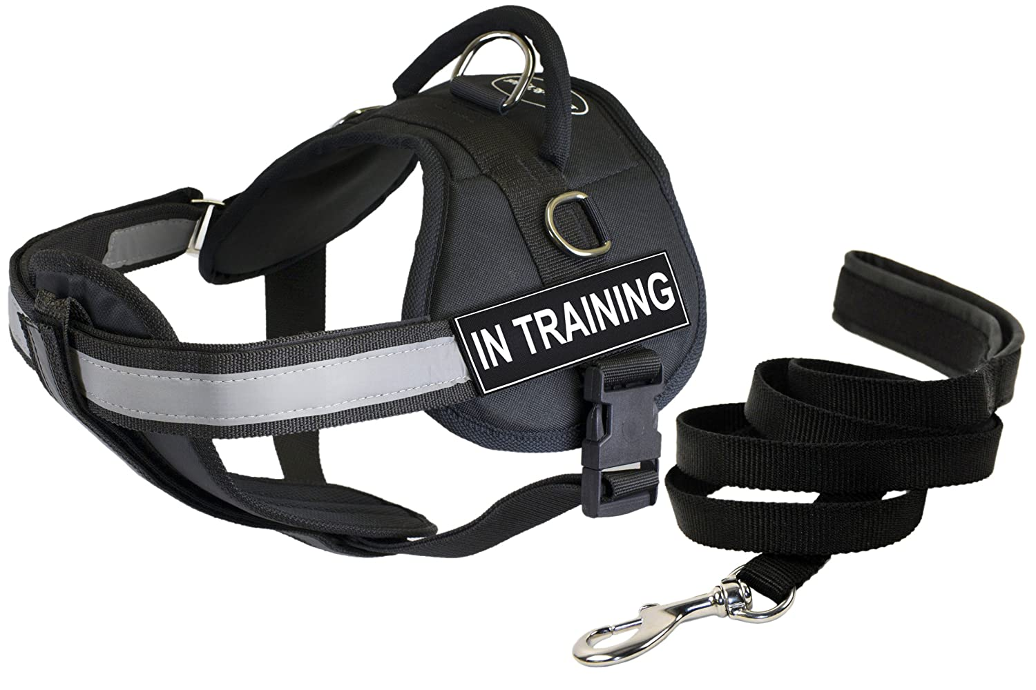 Dean & Tyler 25 by 34-Inch in Training Dog Harness with Padded Puppy Leash, Small