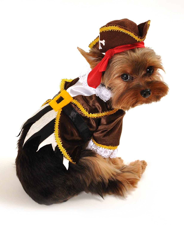 Amazon.com  Anit Accessories Pirate Captain Dog Costume 8-Inch  Pet Costumes  Pet Supplies  sc 1 st  Amazon.com & Amazon.com : Anit Accessories Pirate Captain Dog Costume 8-Inch ...