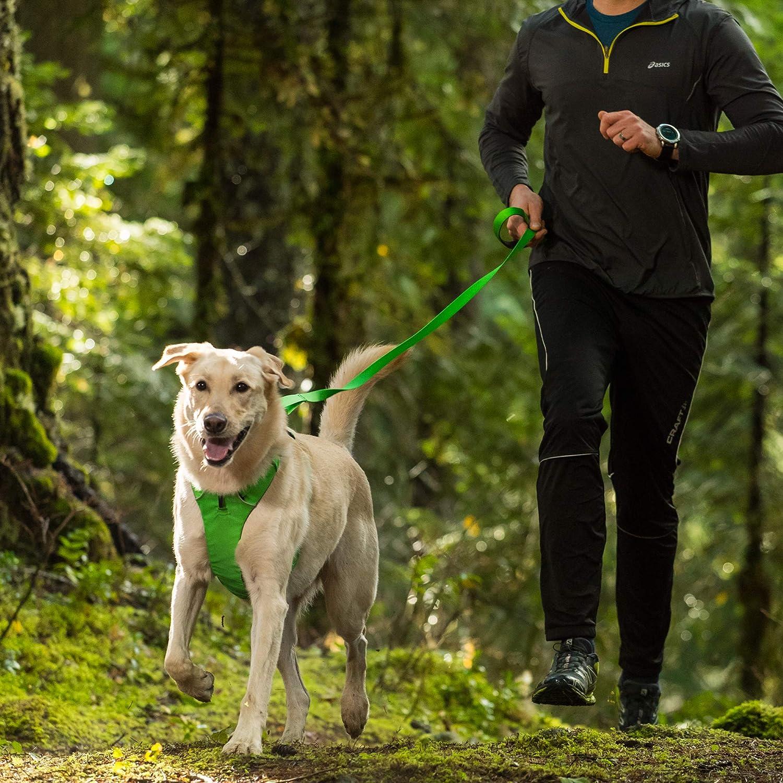 Ruffwear Front Range Correa,: Amazon.es: Productos para mascotas