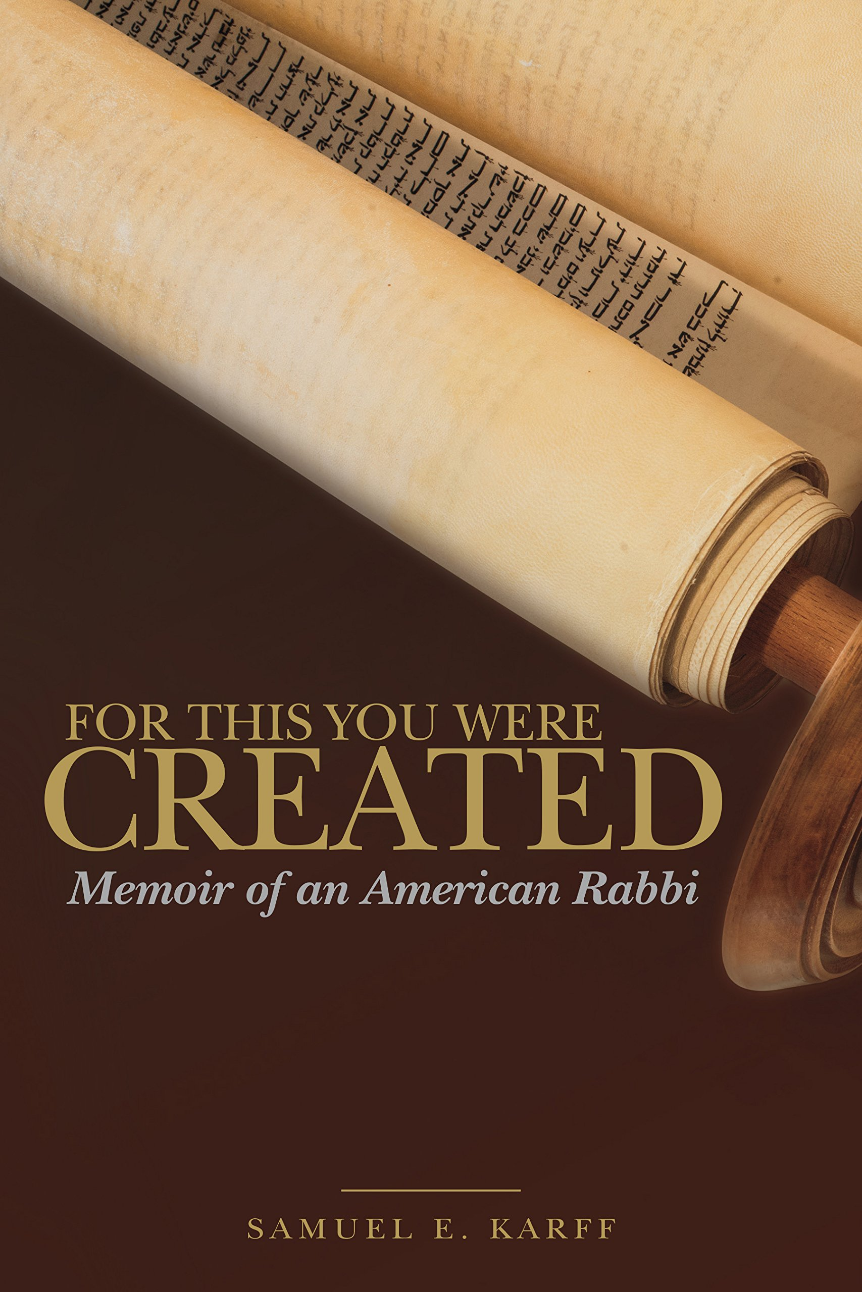 Download For This You Were Created: Memoir of an American Rabbi pdf