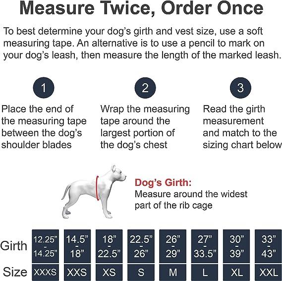 Arnés para perro guía con correas de velcro y asa | Disponible en ...