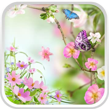 Amazon Flowers Live Wallpaper Appstore For Android