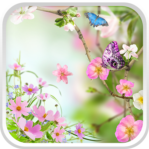 Amazon.com: Flowers Live Wallpaper: Appstore For Android