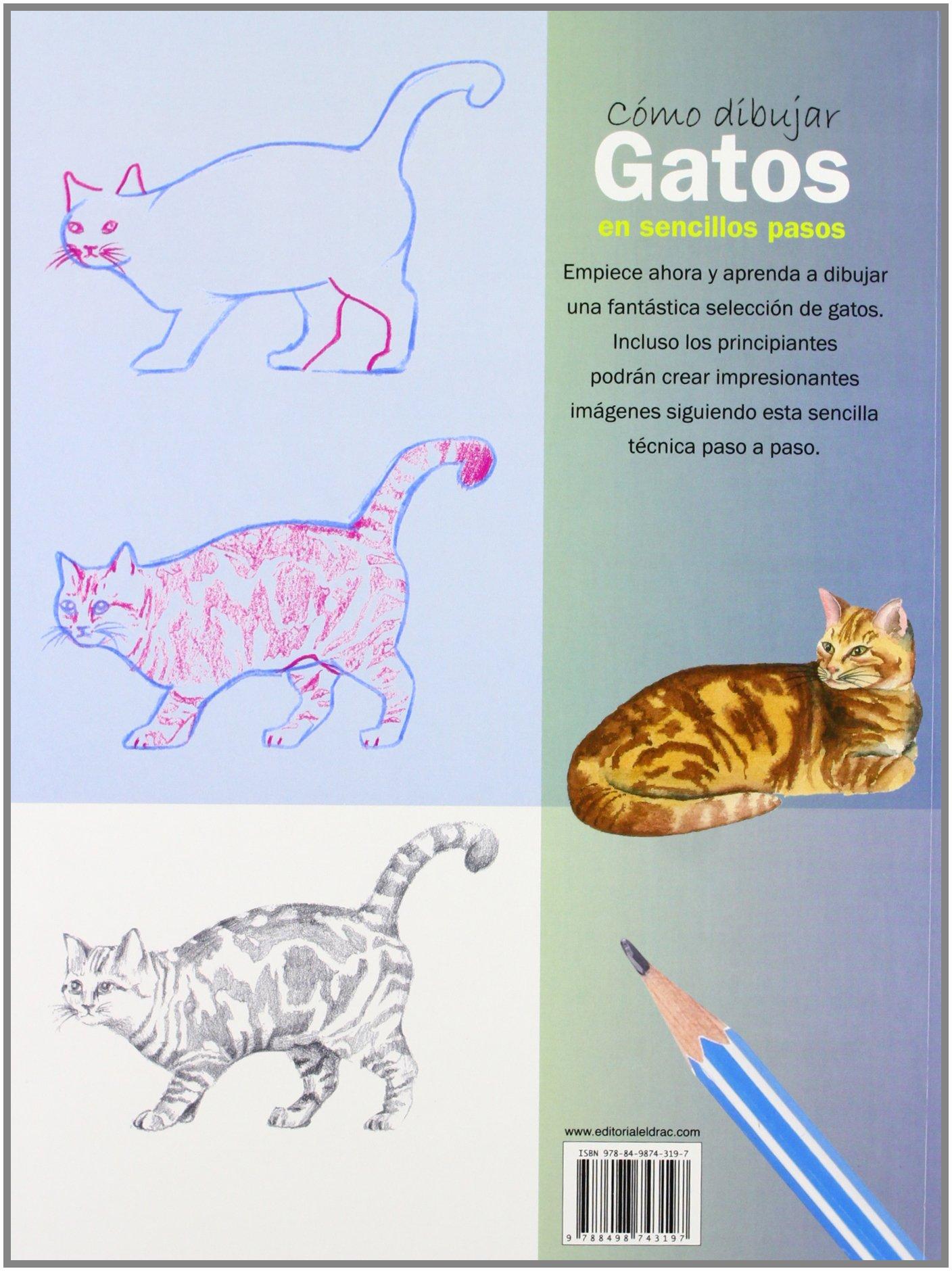 Cómo Dibujar Gatos En Sencillos Pasos (Como Dibujar): Amazon.es ...