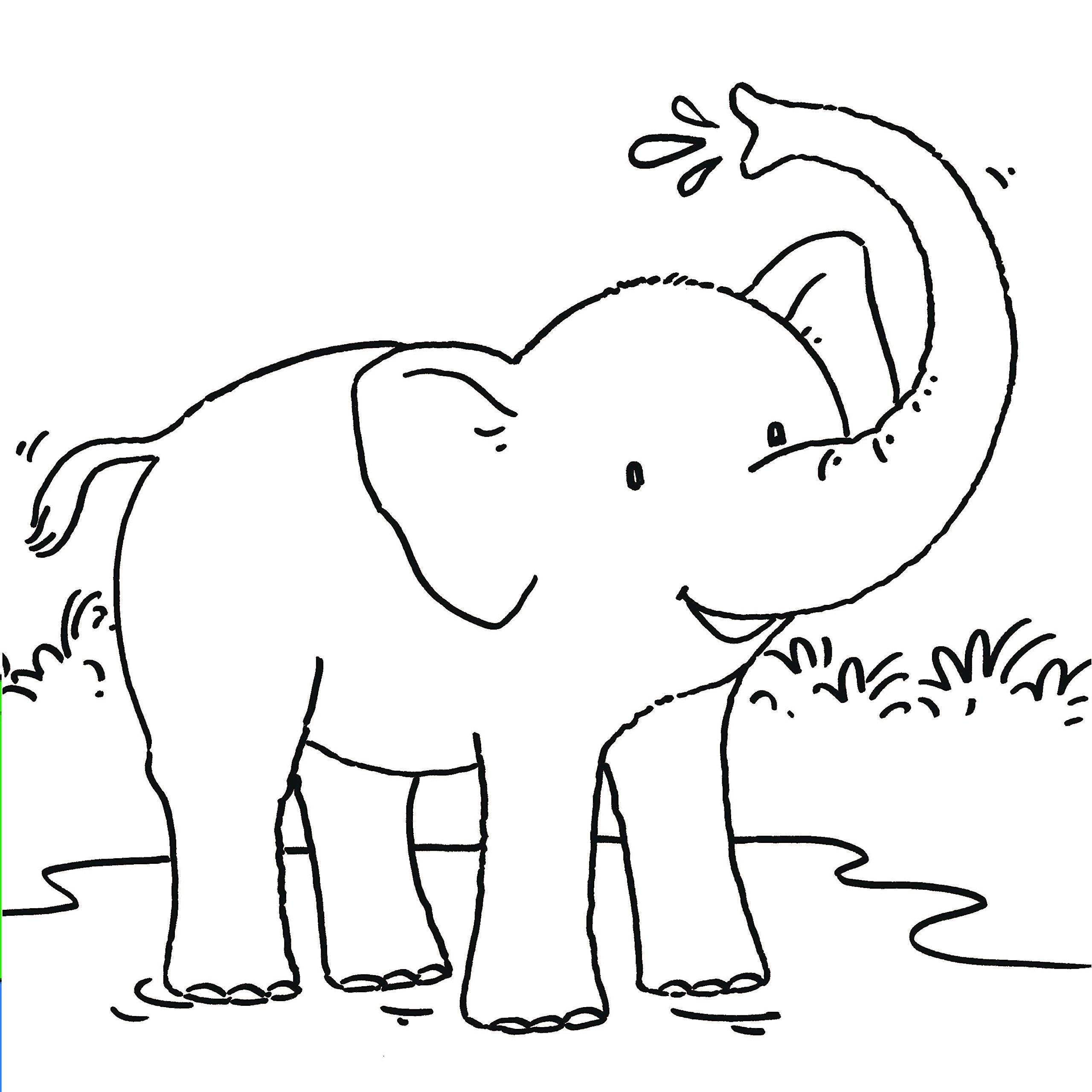 Mein erstes dickes Malbuch - Tiere: Amazon.de: Bücher