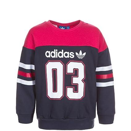 Adidas FR Crew Sweatshirt Kinder: : Sport & Freizeit