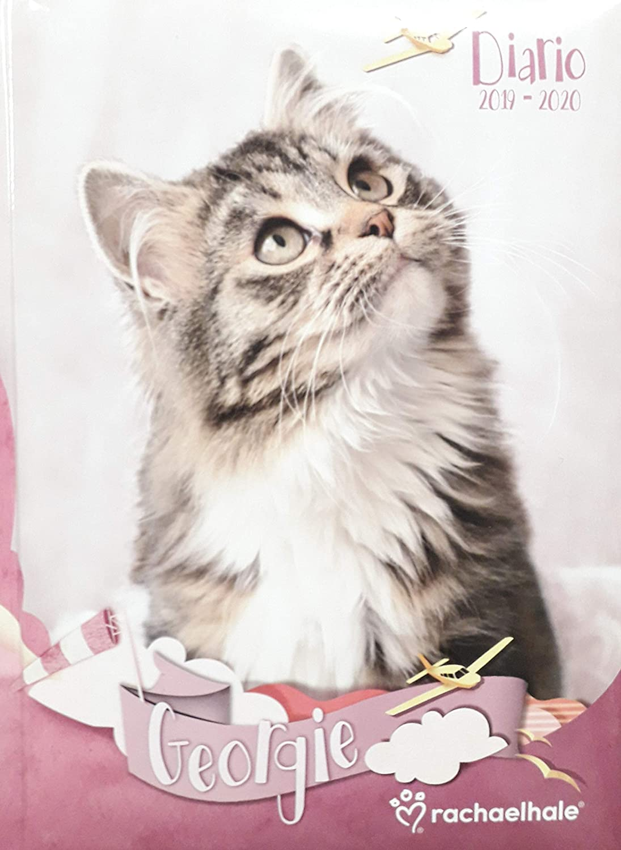 Agenda escolar RACHAELHALE con fecha 2019/2020, rosa gato ...