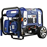 Ford 7,750W Portable Switch & Go Technology and Electric Start, FG7750PBE Dual Fuel Generator