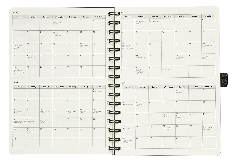 Acción tablero de planificación anual calendario: Diario Semanal Mensual Organizador Anual & objetivo – Diario para metas & hacer las cosas (6 x ...