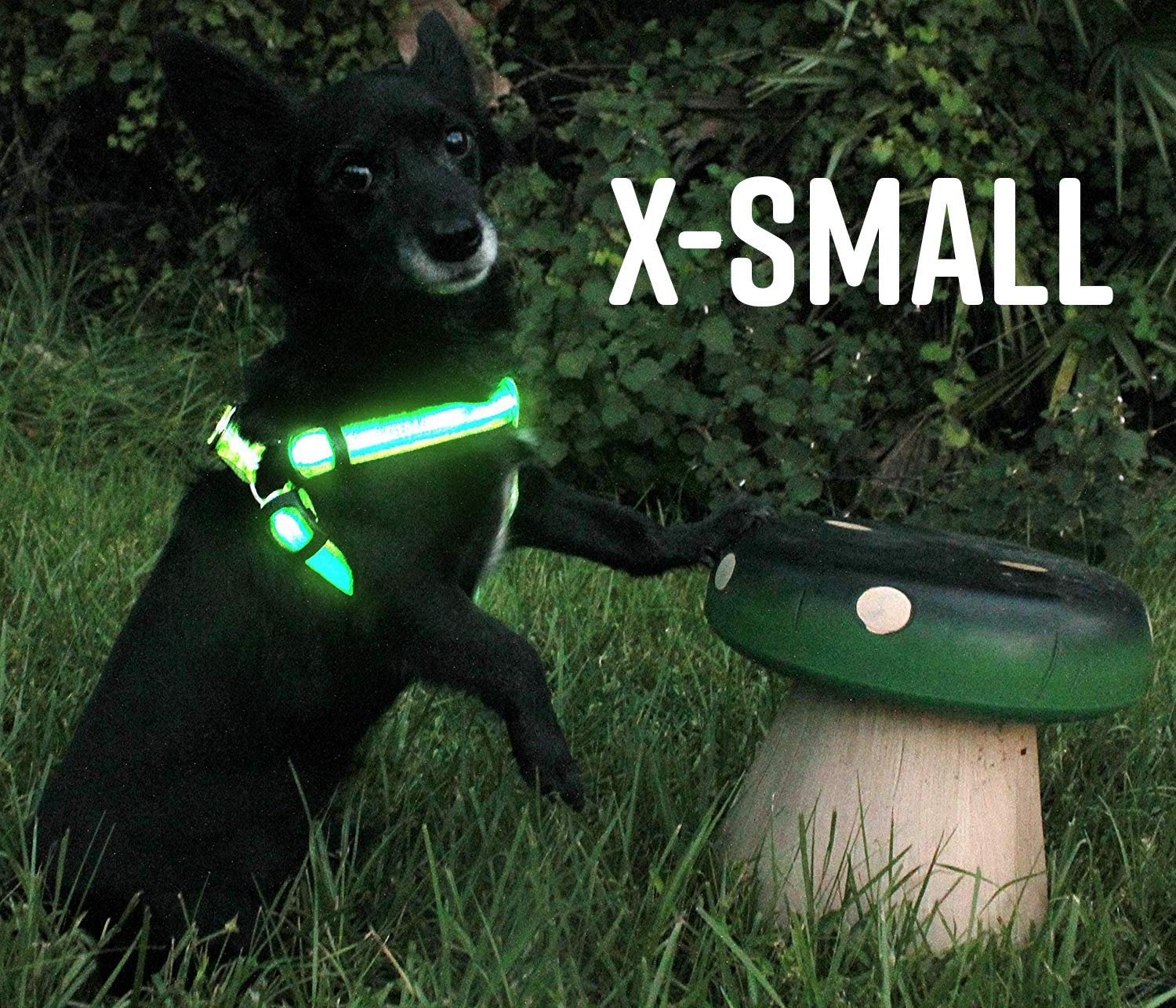 Small LED Dog Harness No-Pull, USB Rechargeable Outdoor Lightweight Reflective Pet Vest Harness with & Adjustable Belt Suit for Small, Medium, Large Dogs Green (Small)