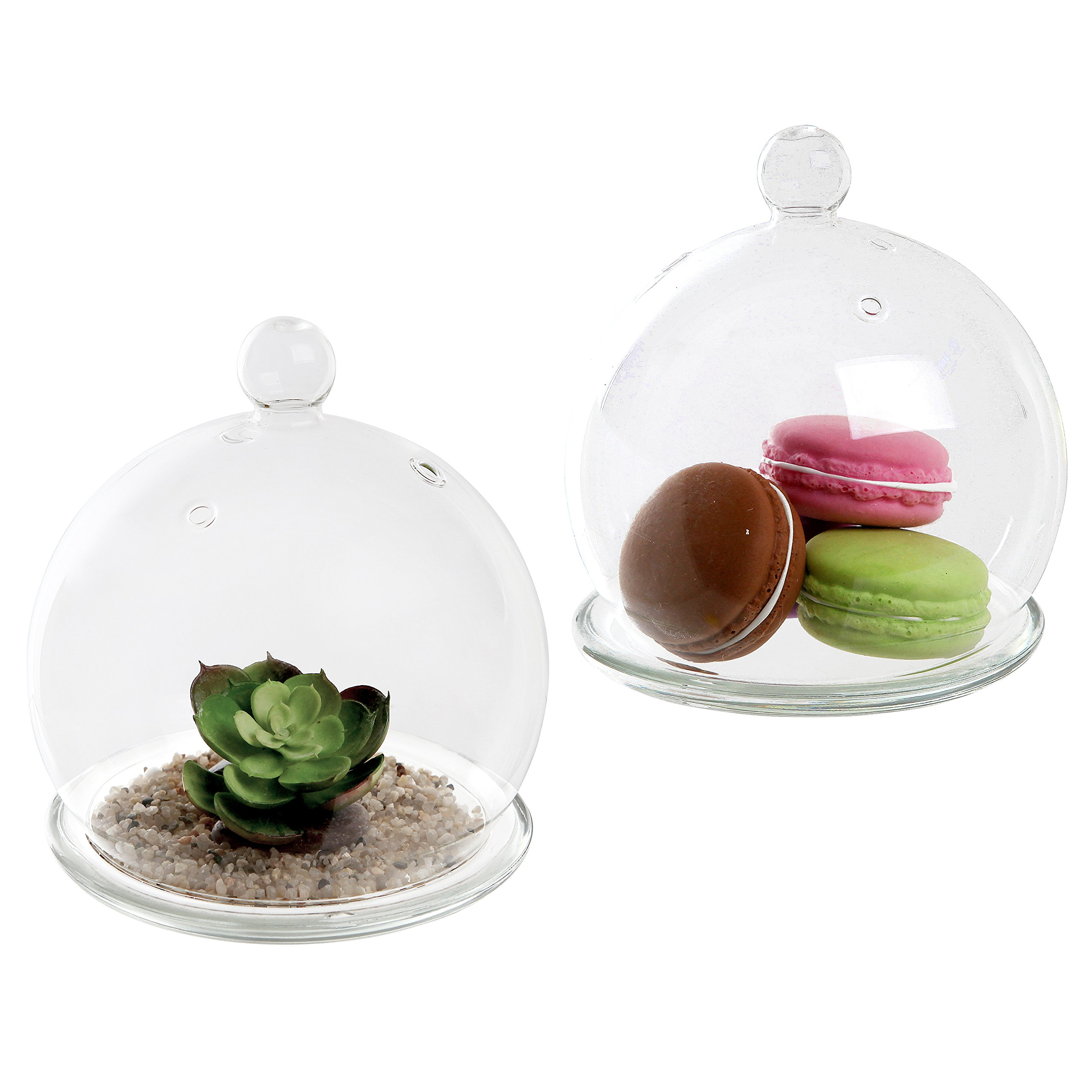 Set of 2 Decorative Clear Glass Dome Cloche Bell Jars / Succulent Terrariums Air Plant Covers w/ Saucers by MyGift