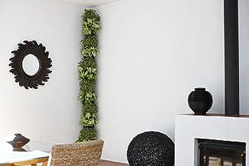 Imagen deminigarden Corner Column para 8 Plantas, Jardines en los Rincones de tu Casa, Modular y Extensible, Incluye el Kit de Riego por Goteo, Colocar en el Suelo o Colgar en la Pared (Negro)