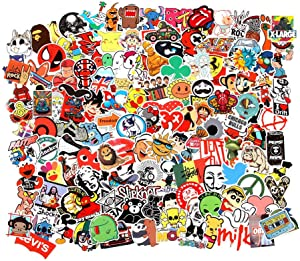 Cool Random Stickers 55-700pcs FNGEEN Laptop Stickers Bomb Vinyl Waterproof Stickers Variety Pack for Luggage Computer Skateboard Car Motorcycle Decal for Teens Adults (55 PCS)