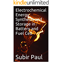Electrochemical Energy Synthesis and Storage in Battery and Fuel Cell (English Edition)