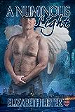 A Numinous Light (The James Lucas Series Book 3)