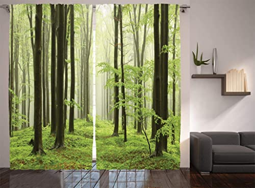 Ambesonne Landscape Curtains, Beech Forest Morning Haze in The Mountains of The Southern Polish Image, Living Room Bedroom Window Drapes 2 Panel Set, 108 X 84 , White Green Brown