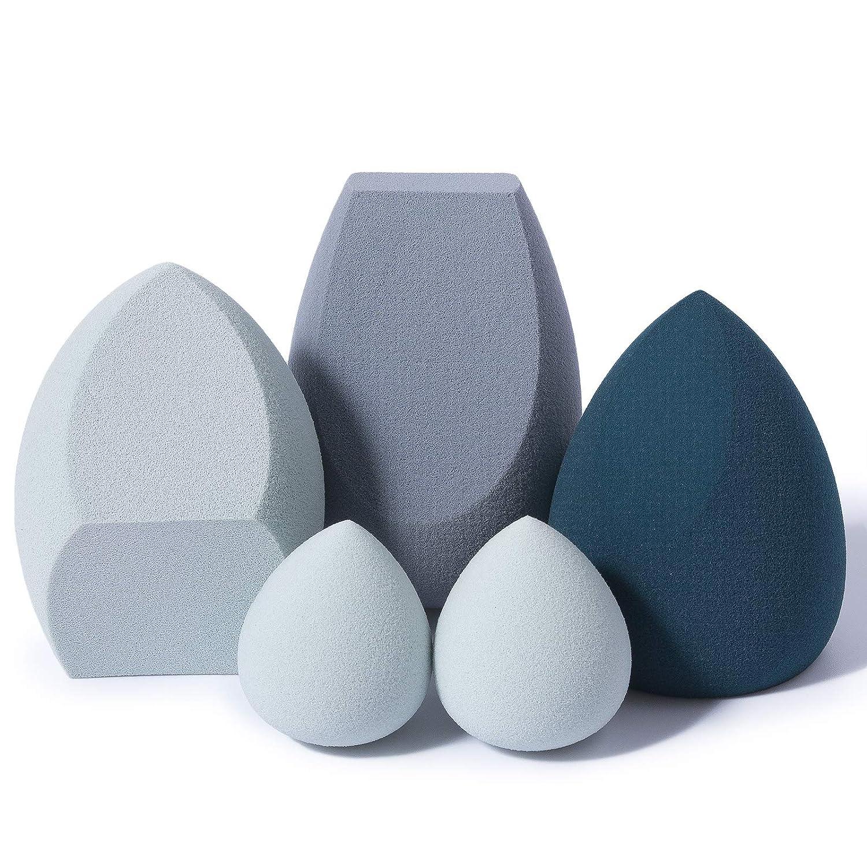 fast b. 5 Pcs Makeup Sponge Blender Set, Beauty Sponge Blender Latex-Free for Foundation, Concealer, Blush & Powder
