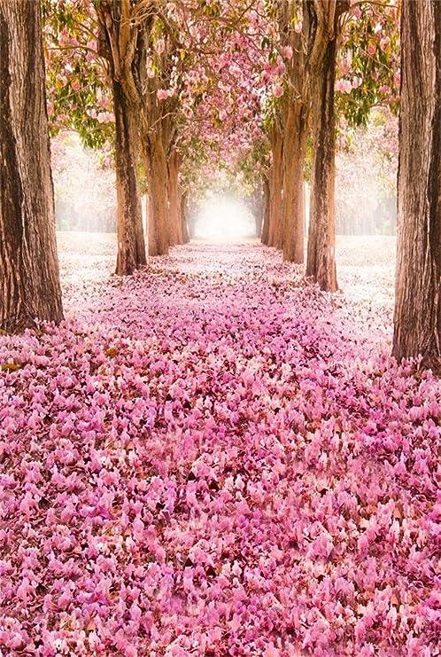 Amazon Com Aofoto 6x8ft Spring Cherry Blossom Backdrop Sweet