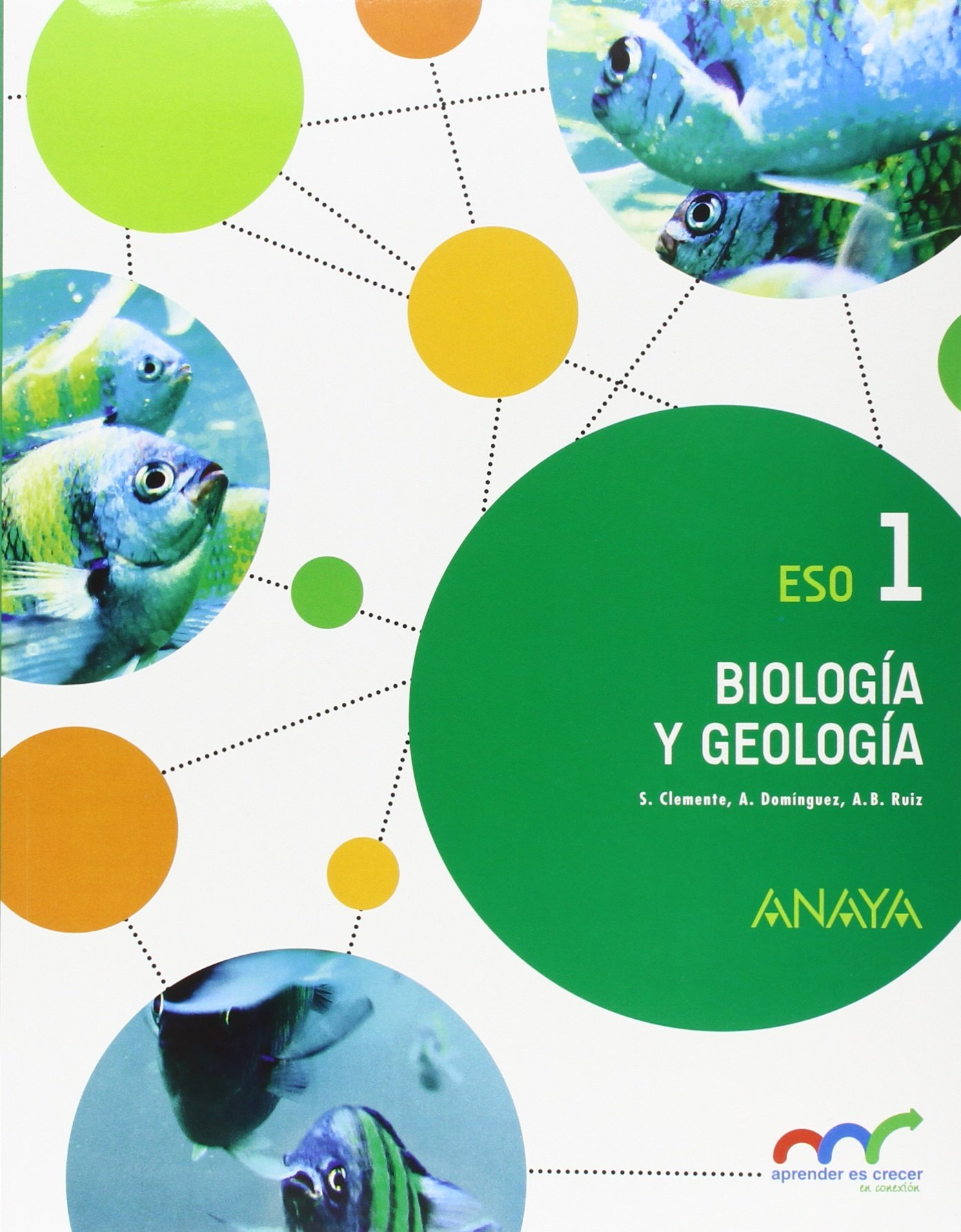 Biología y Geología, 1 ESO. Andalucía: Amazon.es: Aa.Vv.: Libros