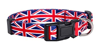 Chien Pup Collier Union Drapeau Native De Anglais Jack 8vNnOwm0
