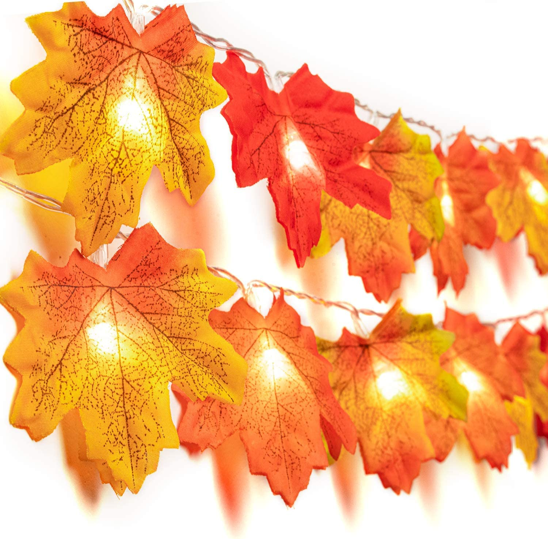 Amazon.com: Sumille Fall - Guirnalda de luces decorativas a ...