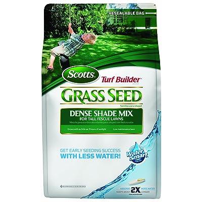 Scotts 18238 Turf Builder Tall Fescue Shade Grass Seed Mix Bag, 3-Pound : Grass Plants : Garden & Outdoor