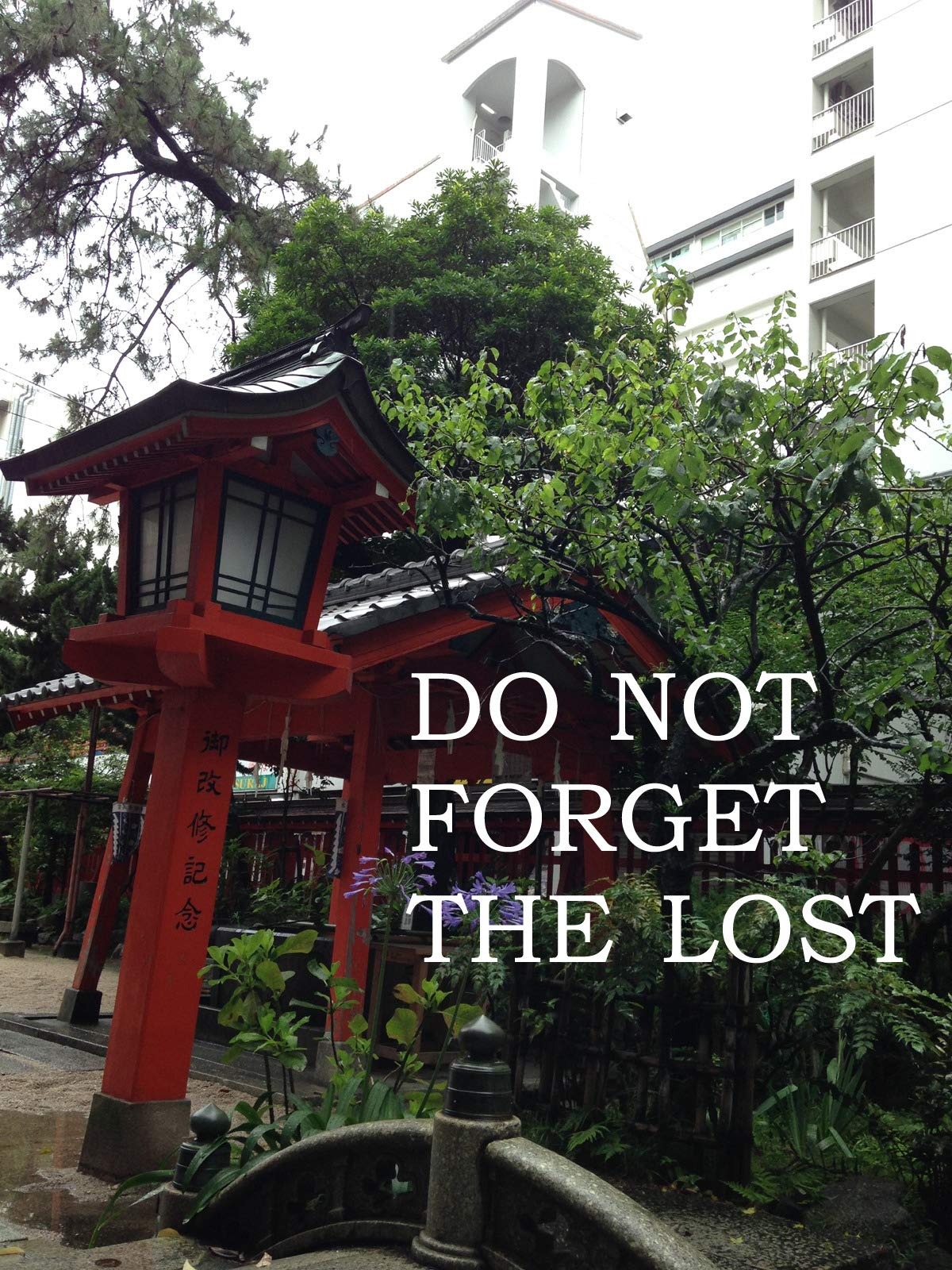 Do Not Forget the Lost