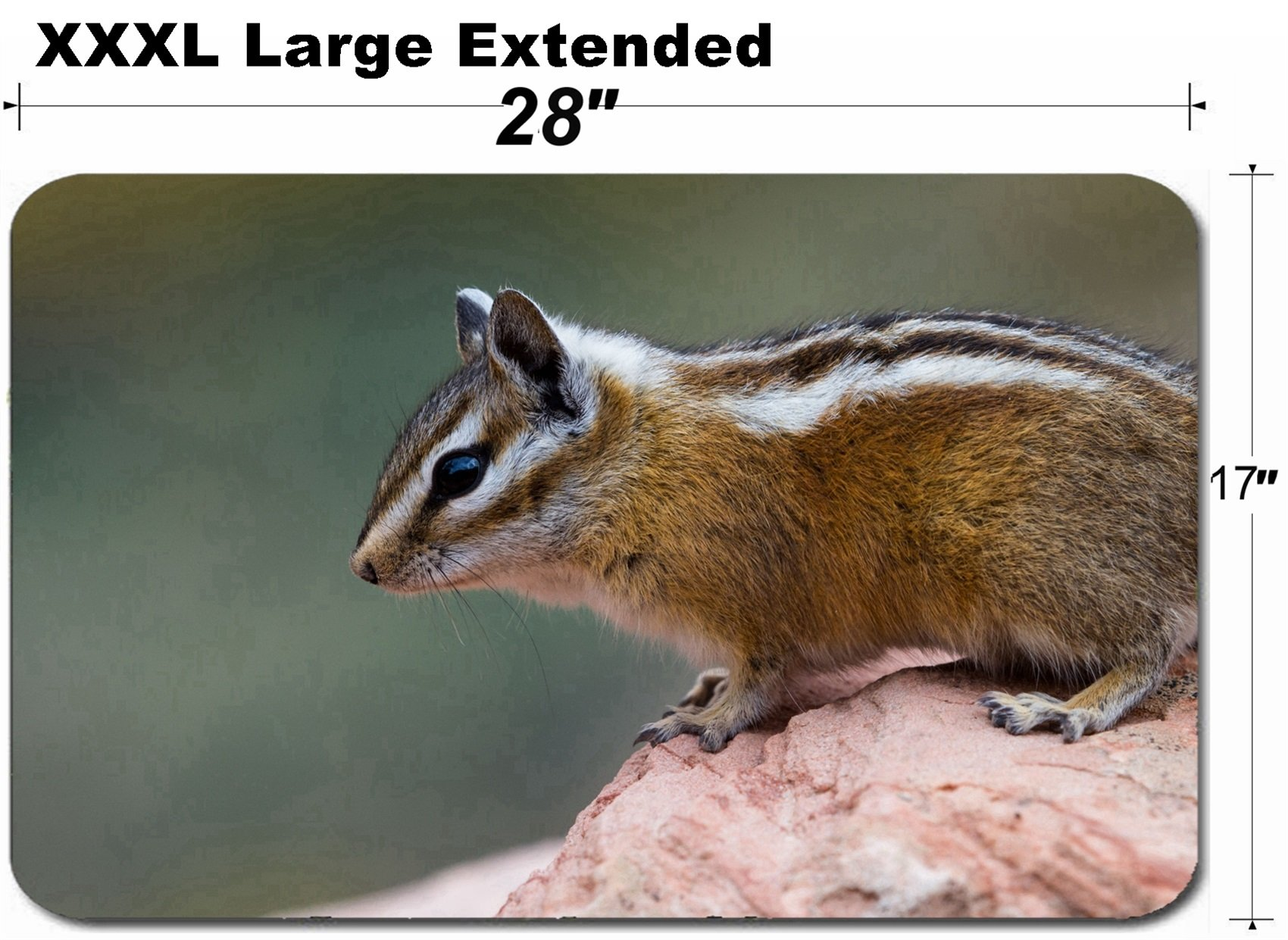 MSD Large Table Mat Non-Slip Natural Rubber Desk Pads Cute Small Chipmunk Standing on a Sandstone Rock in North America Image 34627874 Custom