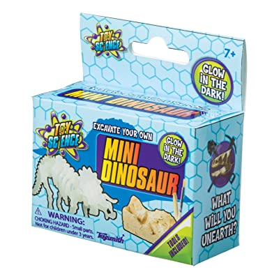 Toysmith Mini Dino Excavation Toy: Toys & Games