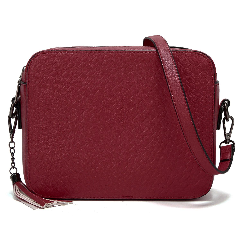 AlARION Medium Tassel Crossbody Bags Shoulder Bag for Women Ladies Purse and Handbags
