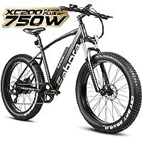 Eahora 750W Electric Bikes