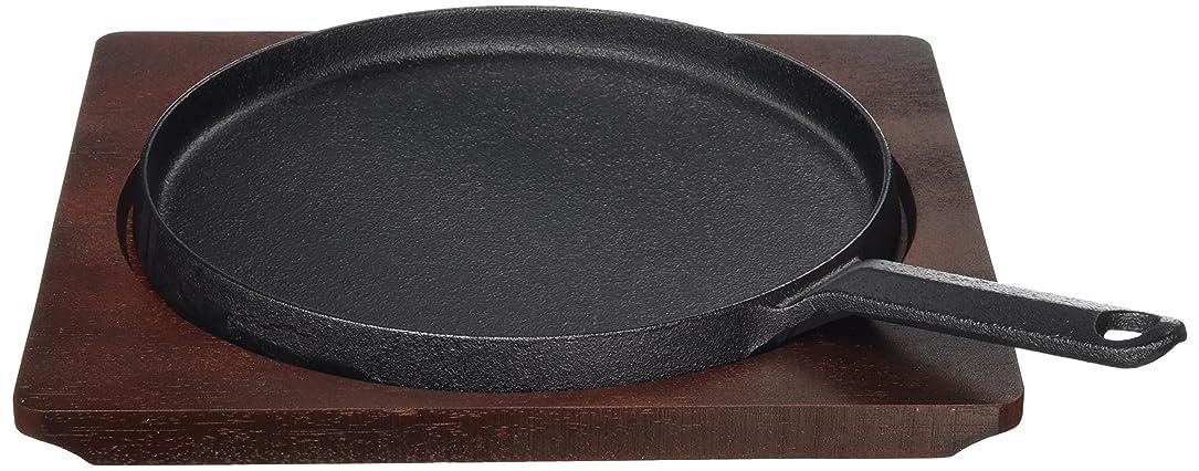 ホバーとティームブロー中部 トキワ ステーキ皿 小 24cm 小判 日本製 PTK07003