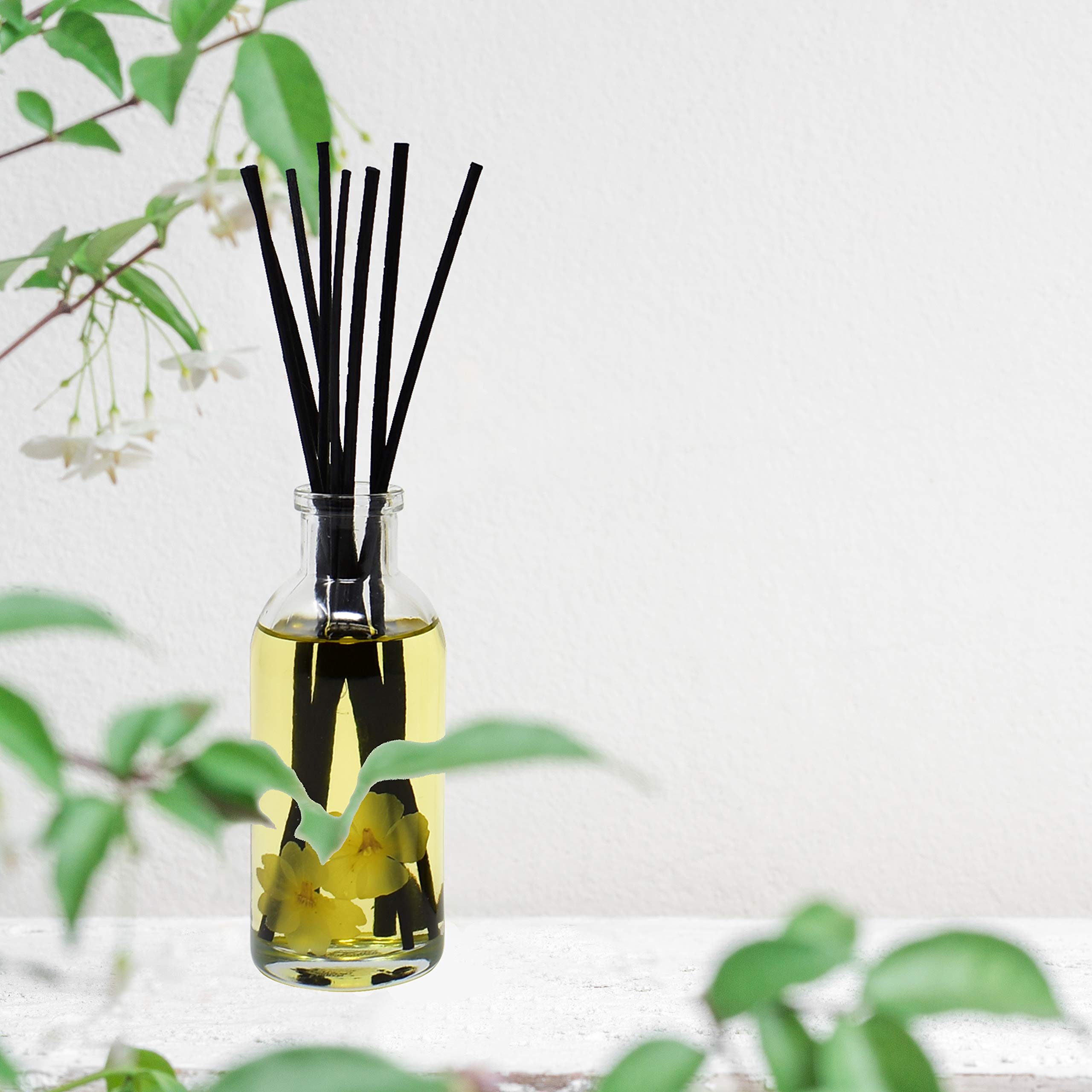 Urban Naturals Citrus & Jasmine Reed Diffuser Scented Sticks Set | (Energy + Clarity) Mind & Body Aromatherapy Collection | Essential Oil Botanical Room Scent | Liquid Potpourri Alternative by Urban Naturals (Image #7)