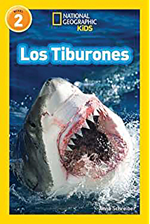 Mira, un tiburón! (Look, a Shark!) (Bumba Books ® en español - Veo ...