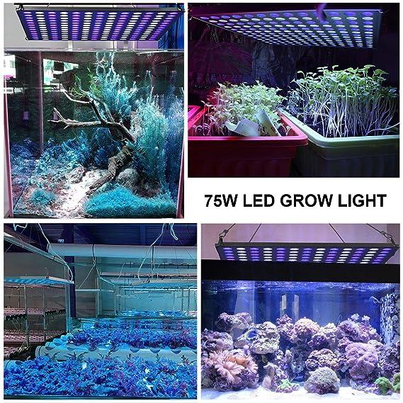 Roleadro Led Acuario Marino 75W con Temporizador Lampara Acuario Espectro Iluminacion Led para Acuarios Marino Coral Pecera y Planta: Amazon.es: Jardín