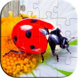 Insects and Bugs Puzzles for Kids - Fun and Educational HD Jigsaw Puzzles Game for Preschool or Kindergarten Toddlers, Boys and Girls Under Ages 2, 3, 4, 5 - Free Trial