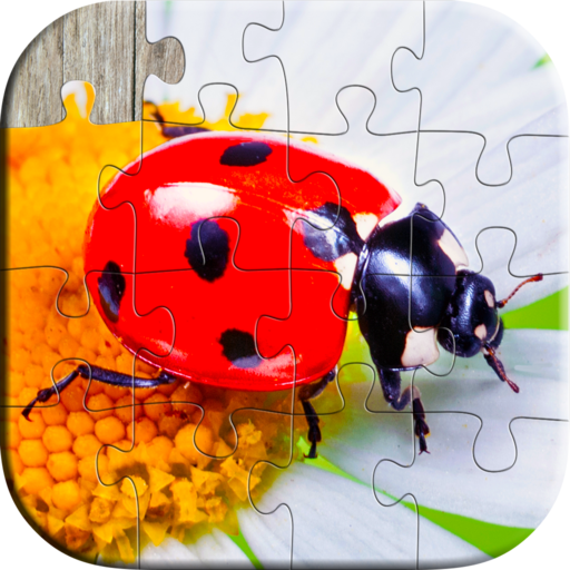 New Toys For Boys Ages 5 7 : Amazon insects and bugs puzzles for kids fun