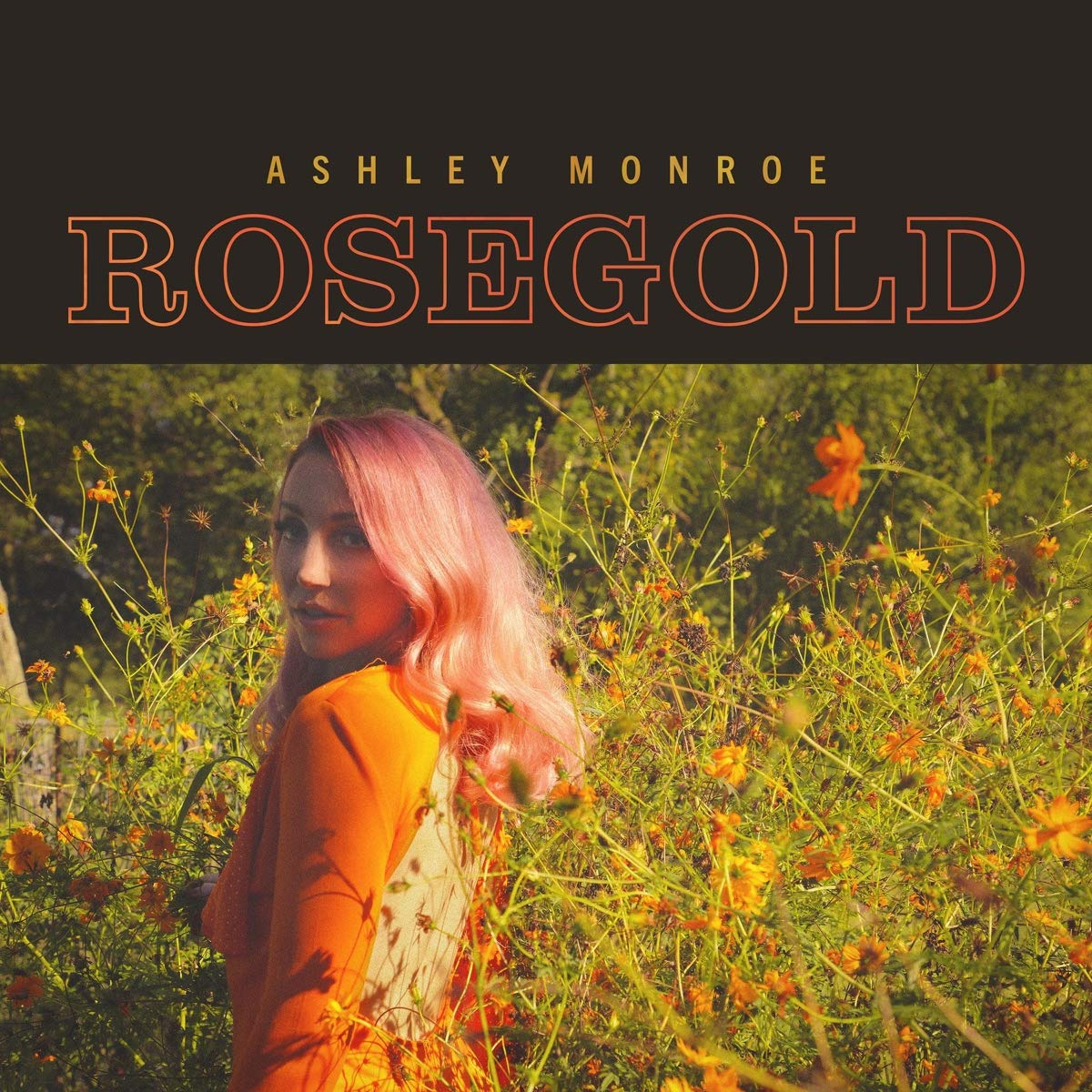 Book Cover: Rosegold