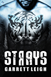 Strays  (Urban Soul Book 2) (English Edition)