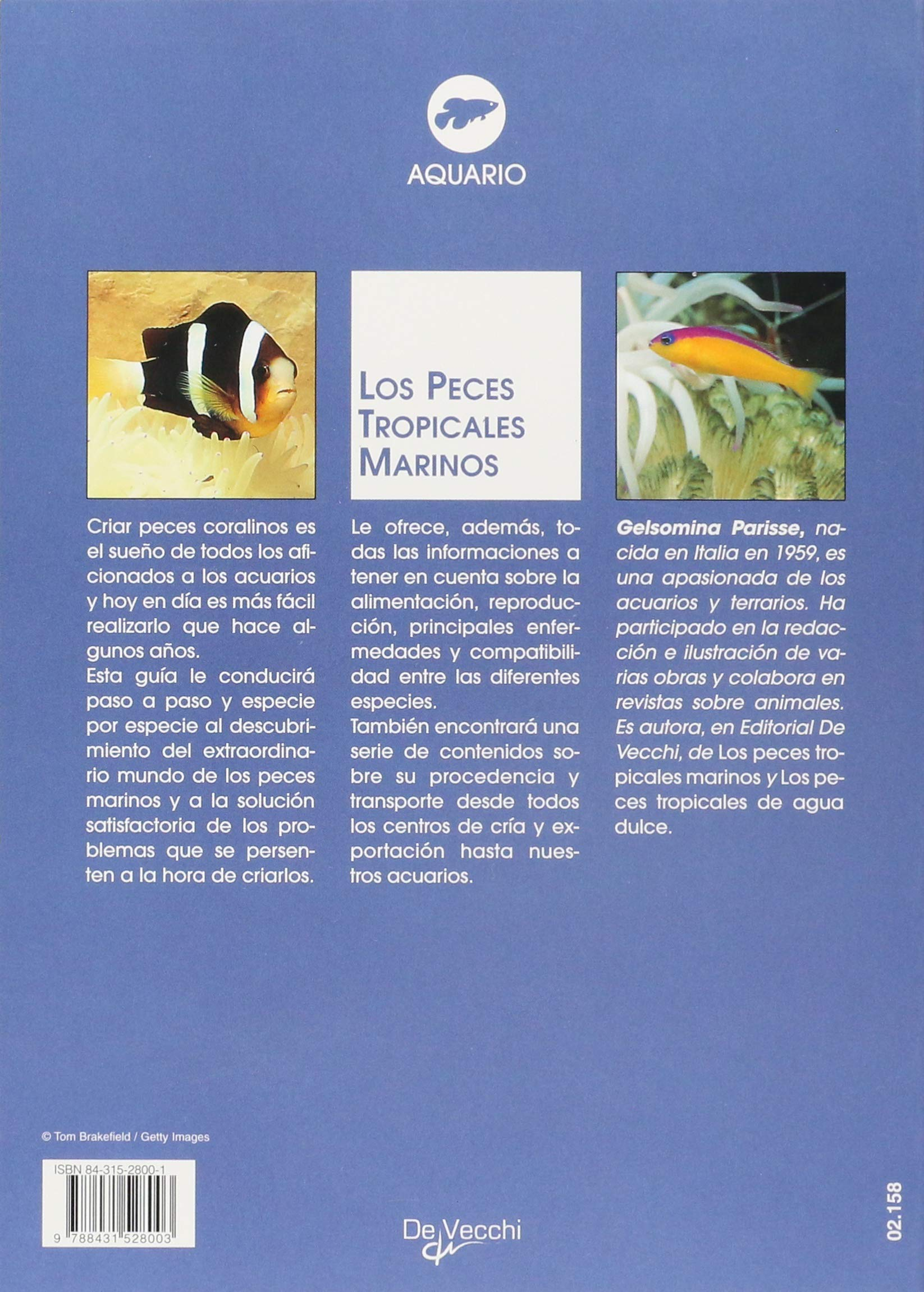 peces tropicales marinos los: Gelsomina Parisse: 9788431528003: Amazon.com: Books