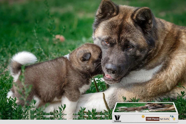 【 開梱 設置?無料 】 pigbangbang、34.4 X 22.6インチ、プレミアム木製Unique Present Present toファミリNice壁画ポスター X – – American Akita Dog Mother子犬 – 1500ピースジグソーパズル B07FRQPB6F, 写真のダイヤ:cdbb2aea --- a0267596.xsph.ru