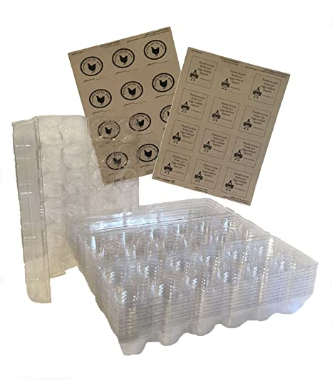5e2ade8c5c29 Amazon.com : Plastic Fresh Egg Cartons & Labels 12-Pack Clear Tri ...
